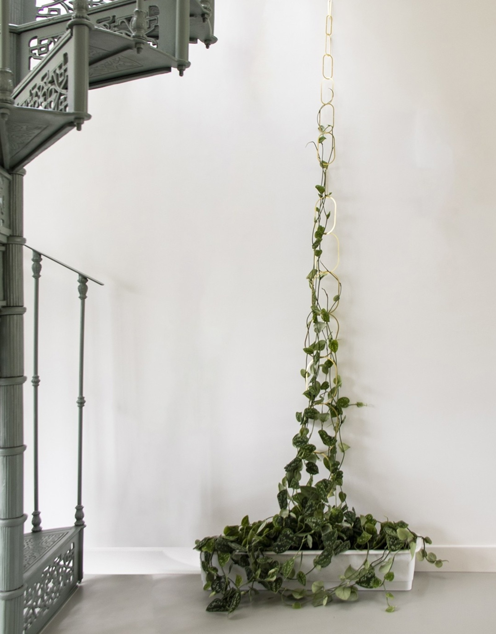 Botanopia - Brass support for climbing plant