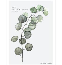 My deer art shop My deer art - mini prints - eucalyptus - A5