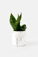 House Racoon House Raccoon - Emila planter White Marble