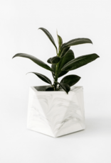 House Raccoon House Raccoon - Mare planter - Large - White Marble