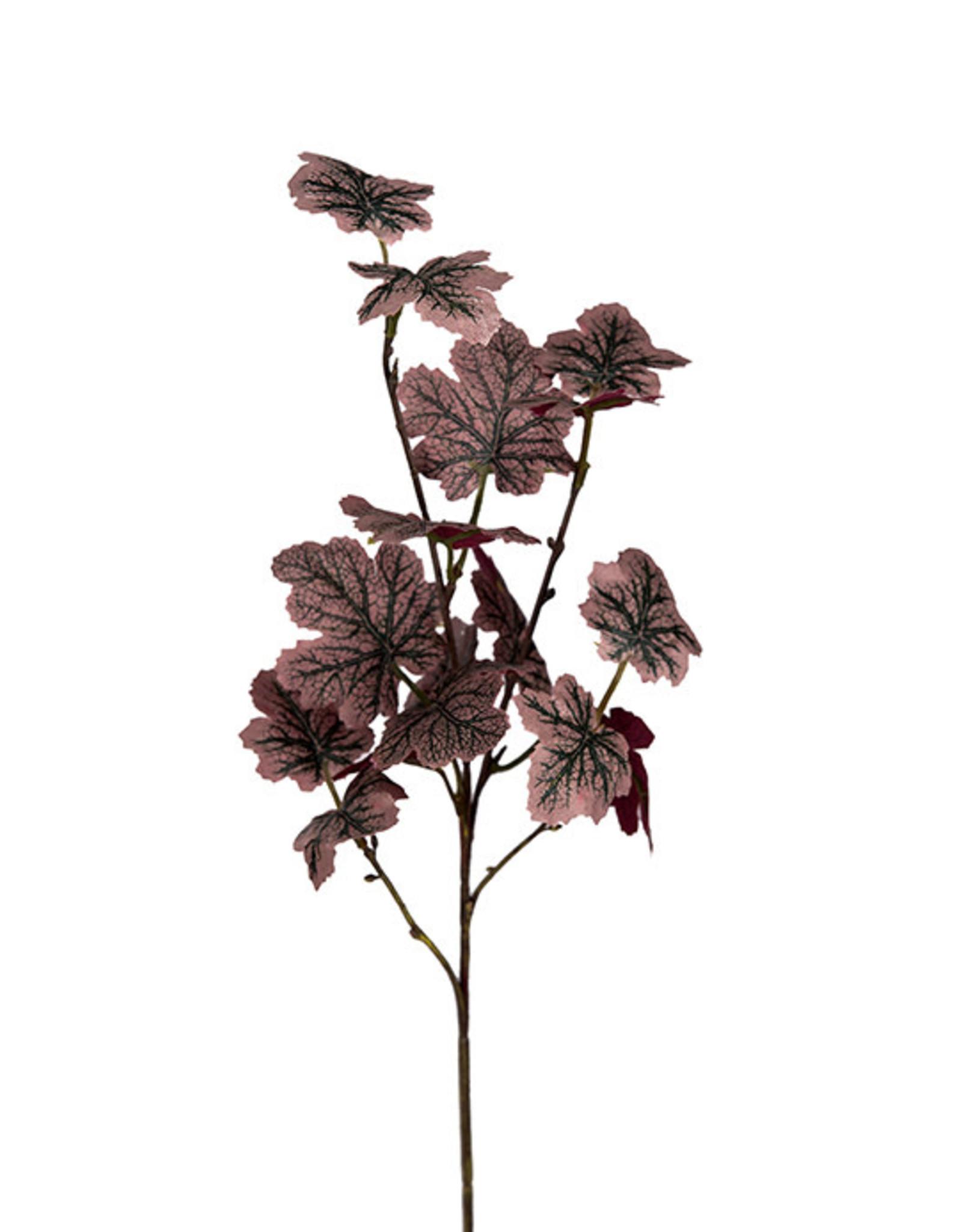 Mr Plant Mr Plant - Kvist