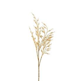Mr Plant Mr Plant - Gras