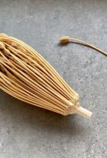 Rivsalt - Toothpick refill