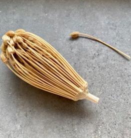 Rivsalt Rivsalt - Toothpick refill