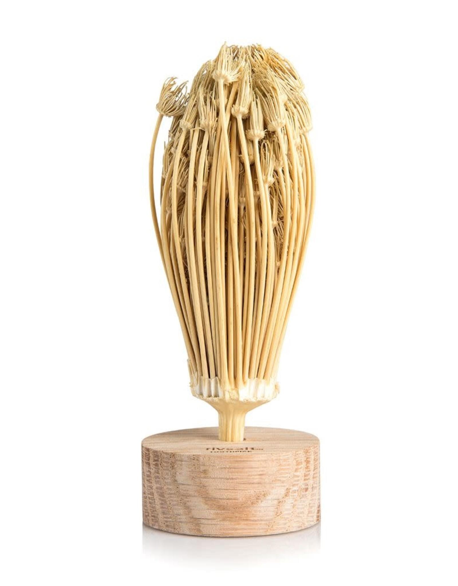 Rivsalt Rivsalt - Toothpick