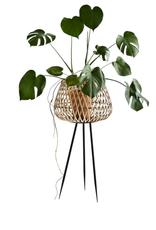 Madam Stoltz Madam Stoltz - Bamboo flower stand