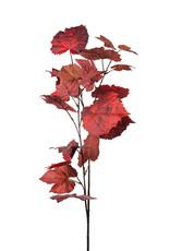 Mr Plant Mr Plant - Hostkvist herfst