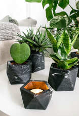 House Raccoon House Raccoon - Mare planter - Large - Black Marble