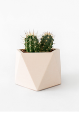 House Raccoon House Raccoon - Mare planter - Large - Millennial pink