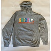 Grizzly Grizzly Color Block Youth Hoodie Grey