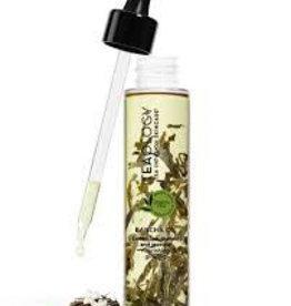 Teaology Bancha Oil