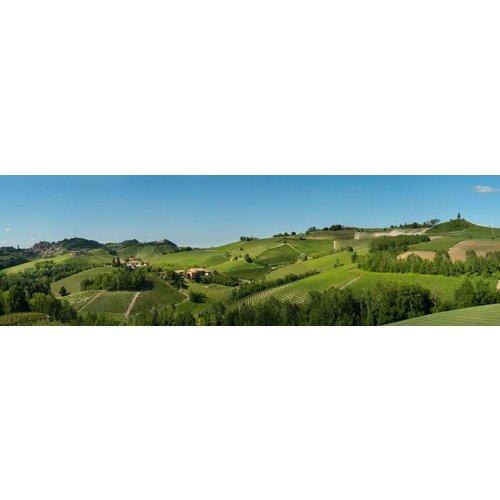 Cascina Amalia Langhe Rossese Bianco - Witte wijn