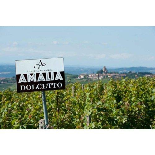 Cascina Amalia Barbera D'Alba - Rode wijn