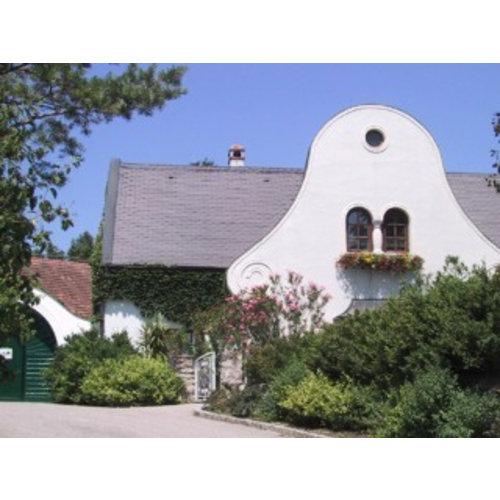 Kloster am Spitz - Thomas Schwarz Spitzmühle - Witte wijn