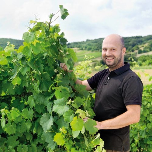 Kloster am Spitz - Thomas Schwarz Blaufränkisch - Rode wijn