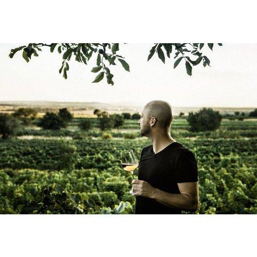 Kloster am Spitz - Thomas Schwarz Muschelkalk Chardonnay - Witte wijn