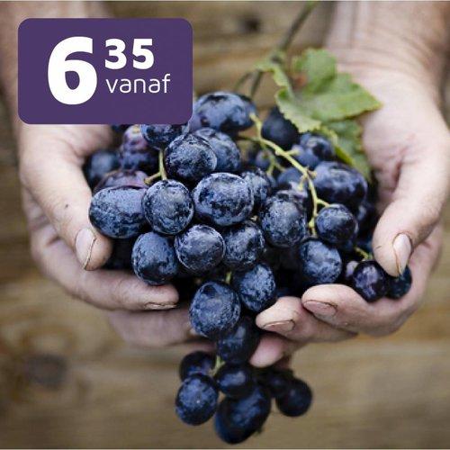 Bio & Vegan wijnen