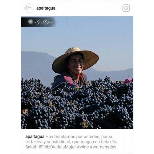 Pacifico Sur Pinot Noir reserve - Rode wijn