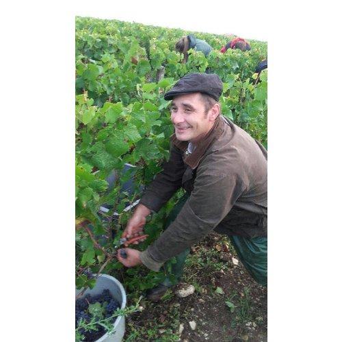 Domaine Piollot Champagne Brut Reserve Magnum - Mousserende wijn