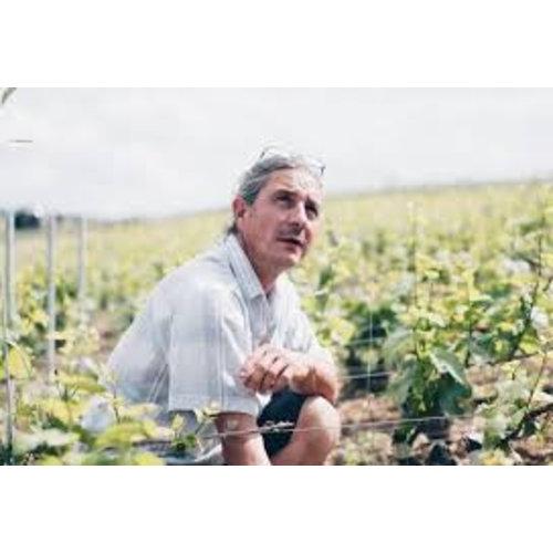 Domaine Piollot Champagne Brut Reserve - Mousserende wijn