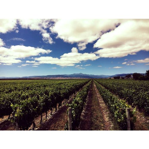 Finca L'Emperatriz  Rioja Crianza - Rode wijn