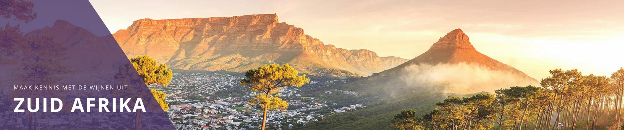 Witte wijn uit Zuid-Afrika