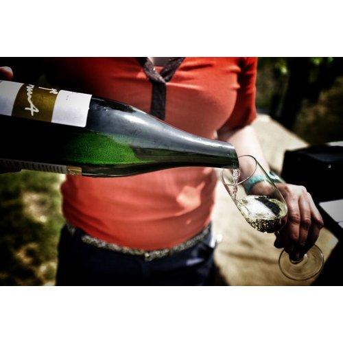 Betuws Wijndomein Linge Wit Blanc de Noir - Witte wijn