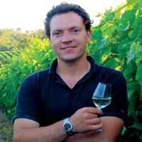 Wijnhuis Domaine Horgelus: een parel uit Frankrijk