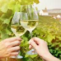 Waarom de ideale serveertemperatuur van wijn zo belangrijk is