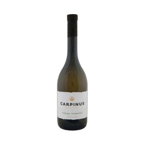 Carpinus Furmint Dry - Witte wijn