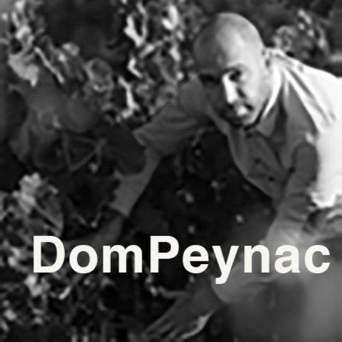 DomPeynac Chardonnay - Witte wijn