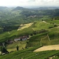 Italiaanse wijn en Italië als wijnland | Alle info op een rij!