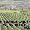 Bourgogne wijnen: deze Franse wijnstreek heeft het allemaal
