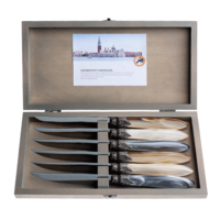Murano 6 Steak Knives in Box Chateau Mix