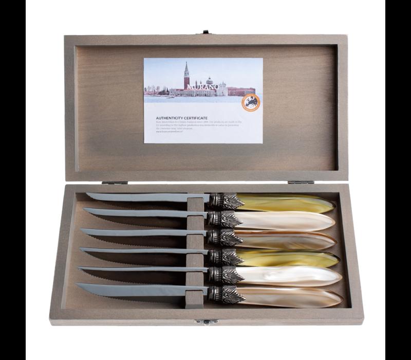 Murano 6 Steakmessen in Kistje Meadow Mix