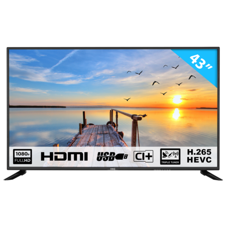 HKC HKC 43F6 43 inch Full HD LED TV