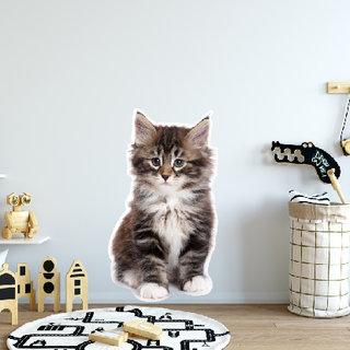 Wandaufkleber - Kätzchen