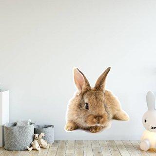 Wandaufkleber - Kaninchen