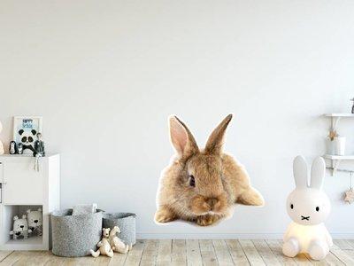 Wall Sticker Rabbit