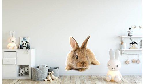 Wall Sticker - Rabbit