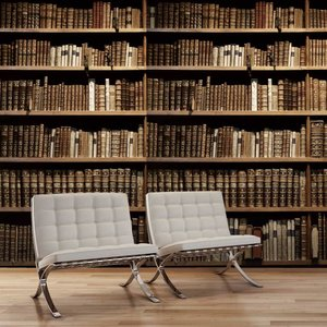 Mural Bücherregal