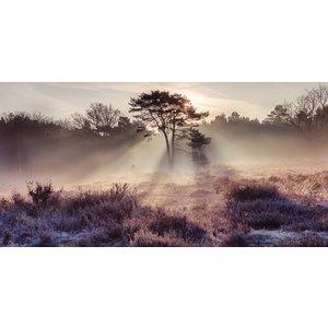 Fotobehang Snijdende Mist