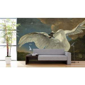 Photo Wall Covered Swan 400 x 260