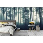 Wall mural Forest in the Mist