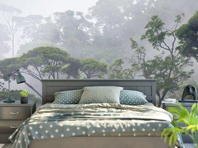 Fotobehang Misty Forest