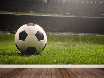 Wallpaper  Soccer Supporter