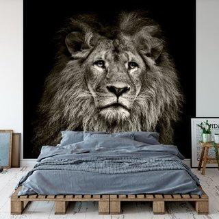 Selbstklebende Fototapete angepasst - Löwe