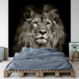 Self-adhesive photo wallpaper custom size - Lion