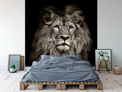Wandtapete Löwe