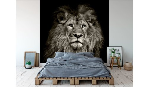 Self-adhesive photo wallpaper custom size - Lion